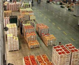 on/off punto europa contributi agroalimentare